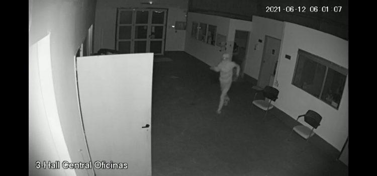 Malas noticias para nuestro Banco Alimentario: dos robos en menos de 30 días